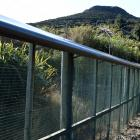 Orokonui Ecosanctuary's predator fence surrounds its perimeter to keep out the predators which...