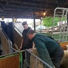 AgResearch's methane emissions measurement trailer was at Blackdale Stud, near Riverton, last...