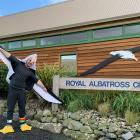Royal Albatross Centre operations manager Chris McCormack wears an albatross suit as World...