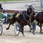 Robbie Holmes drives Allandale to win for trainer Lionel Sinnamon at Addington on Sunday. PHOTO:...