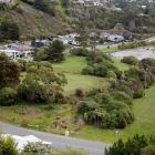 There are fears historic landfill sites like this one in McCormacks Bay could cause an ecological...