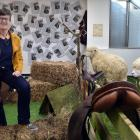 Taxidermied sheep take up temporary residence in Sue Bidrose's Dunedin City Council office as the...