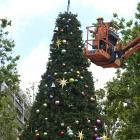 Contractors assemble the 12m Octagon Christmas tree yesterday morning which will be lit in the...