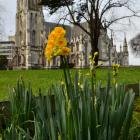 Stretching skyward ... Buildings such as First Church add to Dunedin's ''exceptional beauty''....