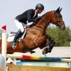 Mark Todd during the show jumping at Rio 2016. Photo: Reuters