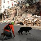 A rescue dog searched this area of damaged buildings on Thursday. Photo: Reuters