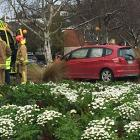 The car crashed into a tree at a roundabout. Photo: Stephen Jaquiery