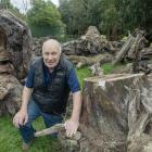 Halswell Residents' Association chairman John Bennett with the matai trees. Photo: Geoff Sloan   ...