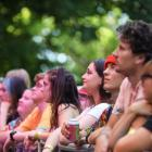 Fans watch Soaked Oats perform at St Jerome's Laneway Festival in January this year. Photo: Getty...