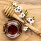 The New Zealand Government and the manuka honey industry are in a battle to  trademark the word '...