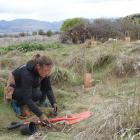 Emily Wilson, of Wanaka, on her first day in her new job planting trees and shrubs beside the...