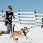 Mark Edmunds, of Queenstown, and his dog, Bear, go for gold during yesterday's Coronet Peak Dog...