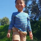 Six-year-old Rozayah Hudson was fatally injured in a farm accident in the Eastern Bay of Plenty...