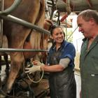 This is the busiest time of year for many large animal veterinarians, and immigration...