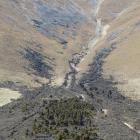 Remnants of forest, on Dunstan Downs, which once grew across Lindis Pass. Photo: ODt files