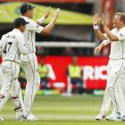 Tim Southee and Neil Wagner celebrate a wicket with the Black Caps. Photo: Getty Images