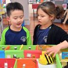 Maori Hill School pupils Ben Man and Abi Brown (both 6) have programmed a Bee-Bot to navigate a...