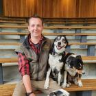 Walter Peak High Country Farm rural operations coordinator Peter Hamilton with his working dogs....