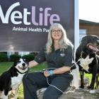 Dr Lori Linney, of Alexandra, with dogs May (left) and Patti is hoping a new study will help...