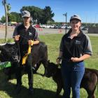 Rangiora High School cattle show team members James Rhodes (15) and Charlotte Rhodes (16) lead 3...