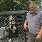 Dog trialling enthusiasts — including Sheffield farmer Kerry Pauling (pictured with Trace) —...