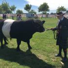 Marshall Stokes (15), of Oxford, leads his 4-year-old Galloway bull while kitted out in the St...