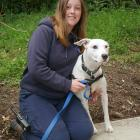 SPCA Dunedin canine attendant Gemma Mitchell with Kesh, who is available for adoption. PHOTO:...