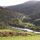 The Waipahi River, scene of last Saturday's 137th Waipahi Gold Medal fly fishing competition....