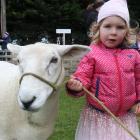 Pinky the sheep and her chaperone Frankie Nurse (3), of Dunedin. PHOTOS: JACK CONROY