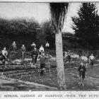 The public school garden at Hampden, with the pupils at work. — Otago Witness, 