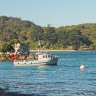 Halfmoon Bay is the only settlement on Stewart Island. PHOTO: RICHARD SMITH