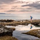 Every rock pool has its own community of barnacles, small fish, shellfish, seaweed and algae....