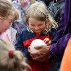 Mia Bruce (6) enjoys the tour at Queens Park, getting to hold an ostrich egg. PHOTO: LAURA SMITH