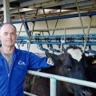Dirk van den Ven has spent four decades as an artificial breeding technician. PHOTO: SUPPLIED
