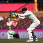 Australia captain Tim Paine in action against Pakistan. Photo: Getty