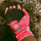 Wearing gloves while handling compost is one of the safety measures you can take to avoid getting...