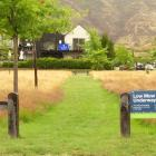 Views of ''low-mow'' trial areas in Nerin Square in Lake Hayes Estate. PHOTO: GUY WILLIAMS