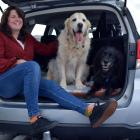 Back at the car after a walk along John Wilson Ocean Dr in St Kilda on Monday are Bridie O'Leary,...