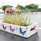A planter box in Mosgiel. PHOTO: LINDA ROBERTSON