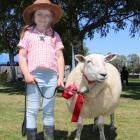 Glenham's Mackenzie Maxwell and Chugzy won a red ribbon in the children's under-6 pet lamb...