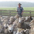 Ali Brenssell, of North Otago, set a record for the highest price paid for a working dog at the...