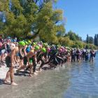 The boys under-16 field at the Otago secondary schools triathlon championships begins its race at...