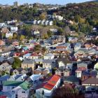 Hostel living around the world is easier than flatting in Dunedin. Photo: ODT