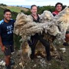 Bill Boyes (centre) holds the huge fleece he removed from a sheep, caught on Scroggs Hill by King...