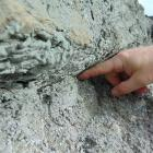 A visitor places a finger in rock amid the South Island's Alpine Fault, at the point where two...