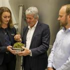 Damien O'Connor visits Lincoln-based company Leaft Foods. Photo: RNZ / Nate McKinnon