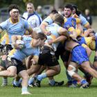 University halfback Kieran McClea looks for a gap in his side's match against Taieri at Logan...