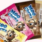 A Gloriavale company has lost a contract to make Moo Chews children snacks after questions about...