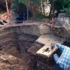 Evidence of ancient kumara storage from about 1450 emerges from this University of Otago sand...