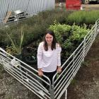 Southland woman Emily Hamill has more than 900 young native plants in her home nursery. PHOTO:...